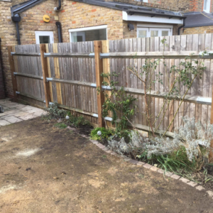 fencing6